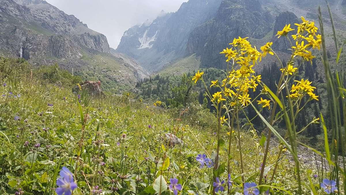 Zum Ak-Saj-Gletscher: Wanderung im Ala-Archa Nationalpark